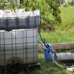 Installer son premier système aquaponique (les règles de base)