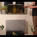 Cultiver en aquaponie avec un aquarium classique (tutoriel)