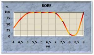 bore11