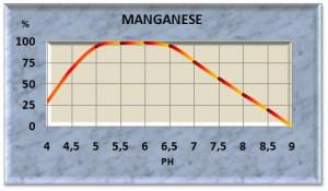 mangan11