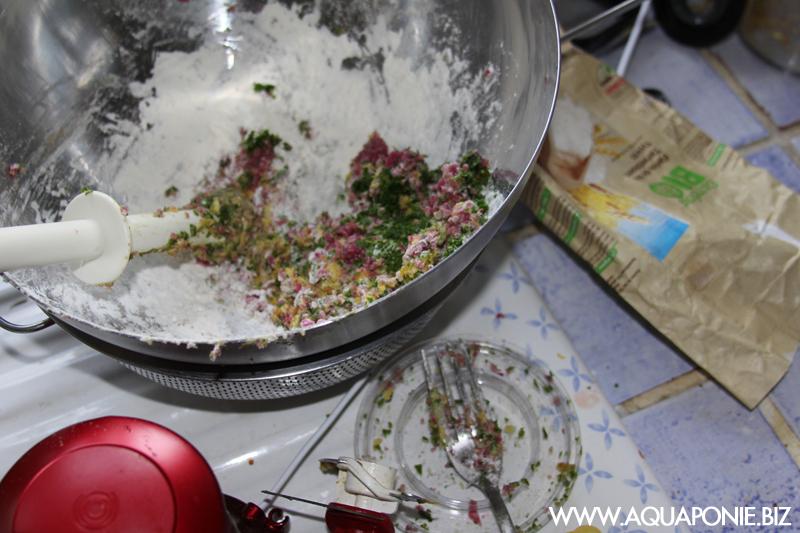 fabriquer la nourriture de ses poissons en aquaponie