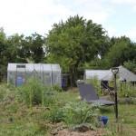 Comparaison du jardin et de son design entre 2014 et 2015