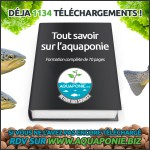1134 téléchargements de notre ebook aquaponique gratuit