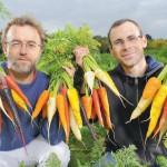 Une technologie qui fait grandir plus vite les plantes en changeant la couleur de la lumière