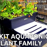 Test du kit aquaponique FishPlant Family Unit