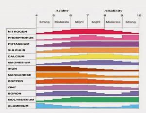 Disponibilités des nutriments en fonction du pH