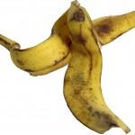 peau-banane-aquaponie