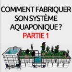 Construction étape par étape d'un système aquaponique avec tables à marées
