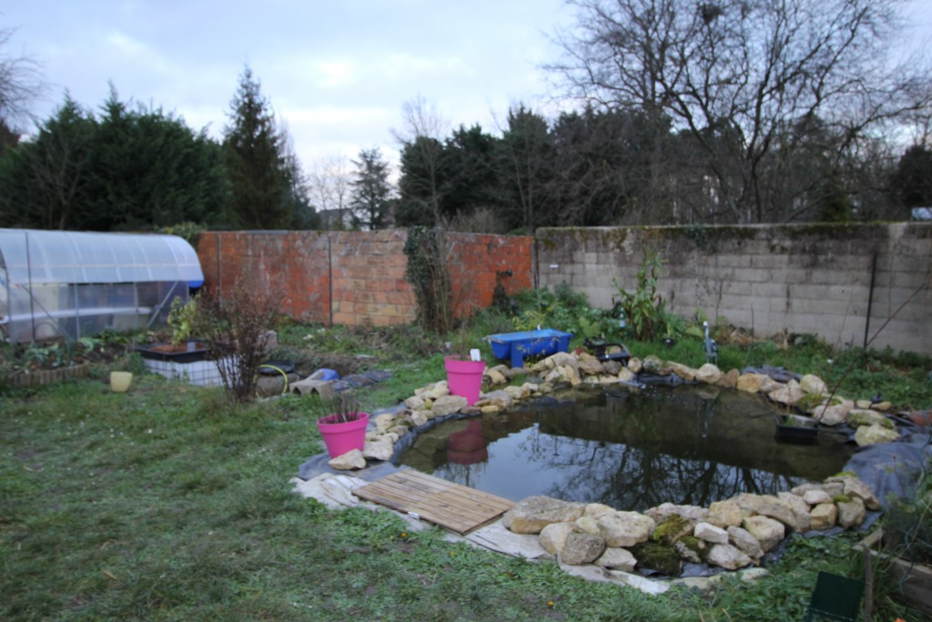 Faire un bassin artificiel dans son jardin aquaponie for Bache salon de jardin