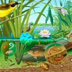 Créer un bassin artificiel en permaculture