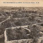 Les murs de cultures : agriculture urbaine au XVIe siècle