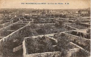 Photo : des murs de culture à Montreuil, un quartier de Paris