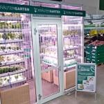 Ce supermarchépropose de cueillir ses légumes sur place!