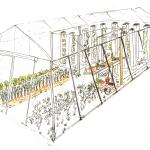 Crowdfunding : Pour une aquaponie de qualité organique