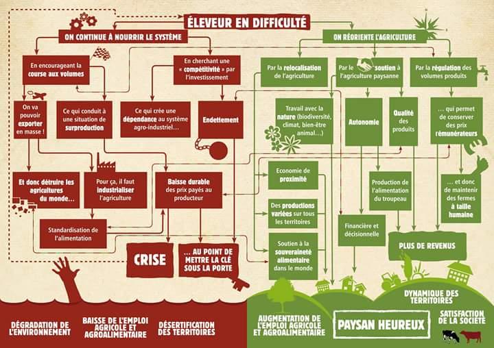 maraichage-agriculture-bio-instensive
