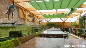 restaurant-oh-terroir-montargis-4