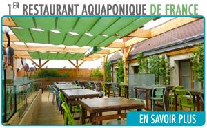 Restaurant aquaponie