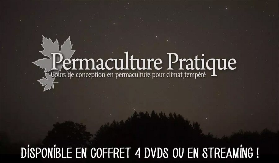 dvd-permaculture