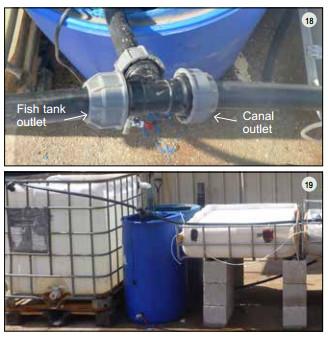 Guide pas à pas dans la construction d'une unite aquaponique classique NFT et DWC (133)