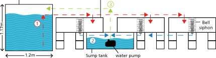 Guide pas à pas dans la construction d'une unite aquaponique classique NFT et DWC (58)