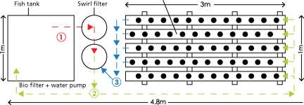 Guide pas à pas dans la construction d'une unite aquaponique classique NFT et DWC (60)