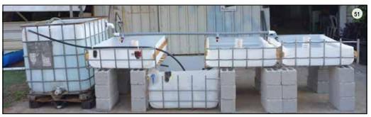Guide pas à pas dans la construction d'une unite aquaponique classique NFT et DWC (88)