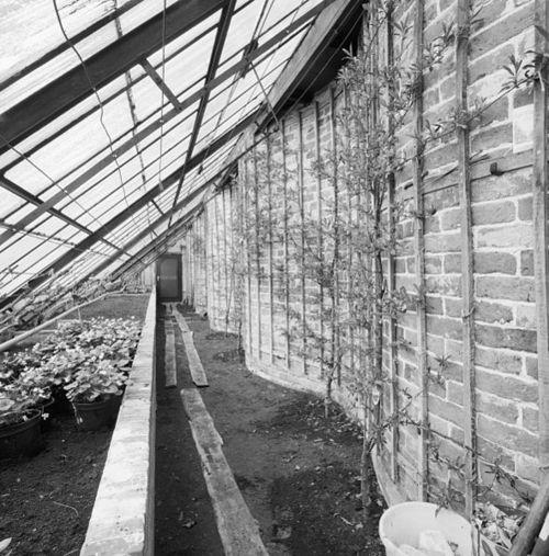 Exemple de serre construite contre un mur de culture sinueux