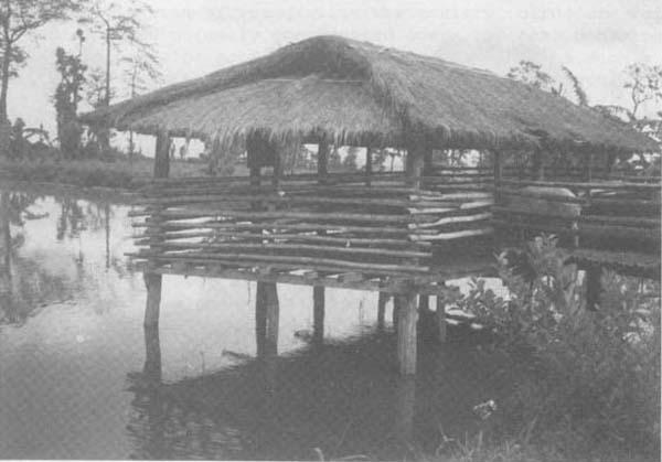 maison-aquaponie