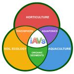 Sandponics : l'aquaponie low-tech et low cost sur sable (IAVS)